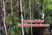 บอลไทยมาถึงจุดที่ แฟนคลั่งหนัก จนต้องปีนต้นไม้ดู!!